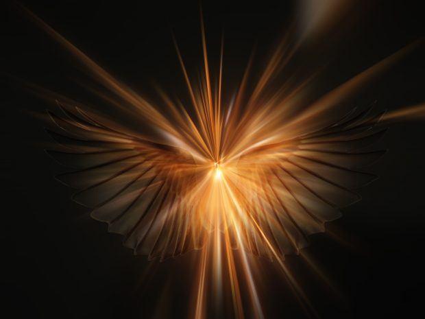 hermandadblanca_org_angel-645591-620x465