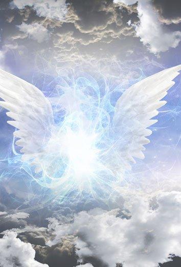 173611-sonar-angeles