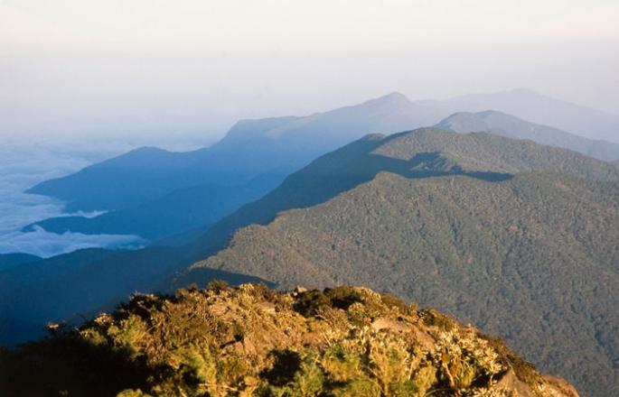 El Cerro Ávila o Waraira Repano.png